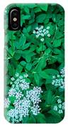 Like Queen Annes Lace IPhone Case