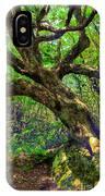 Likin Lichen - Blue Ridge Mountains IPhone Case
