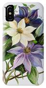 Lilac Clematis IPhone Case