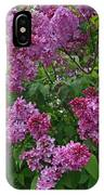 Lilacs At Hulda Klager Lilac Garden IPhone Case
