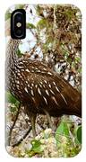 Limpkin In A Tree IPhone Case