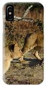 Lion Cubs Of Zimbabwe  IPhone Case