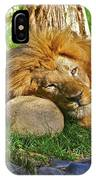 Lion In Repose IPhone Case