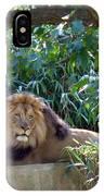 Lion King At Washington Zoo IPhone Case