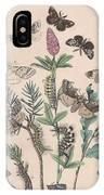 Liparidae - Notodonitdae IPhone Case