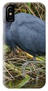 Little Blue Heron Hunting IPhone Case