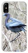 Little Blue In Rookery Louisiana IPhone Case