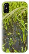 Little Creek IPhone Case