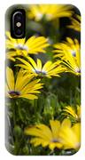 Little Field Of Yellow Daises IPhone Case
