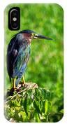 Little Green Heron IPhone Case