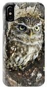 Little Owl 6 IPhone Case