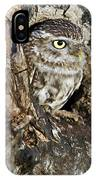Little Owl In Hollow Tree IPhone Case