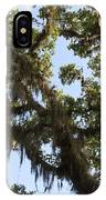 Live Oak Tree With Moss IPhone Case