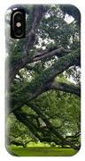 Live Oak Trees IPhone Case