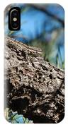 Lizard Bathing In The Sunshine IPhone Case