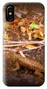 Lizard On The Loose IPhone Case