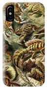 Lizards Lizards And More Lizards IPhone Case