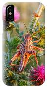 Locust And Thistle 2am-110423 IPhone Case