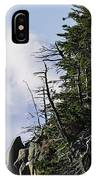Lofty Bald Eagle Surveys Maines Bold Coast IPhone Case