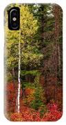 Lone Aspen In Fall IPhone Case