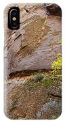 Zion Lone Tree IPhone Case