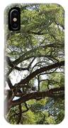 Long Branches IPhone Case