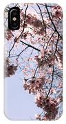 Looking Through Cherry Blossoms IPhone Case