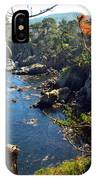 Looking Through The Trees At Point Lobos IPhone Case