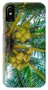 Looking Up A Coconut Tree IPhone Case