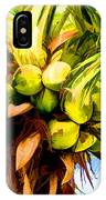 Lots Of Coconuts IPhone Case