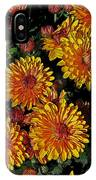 Lots Of Sunshine IPhone Case