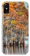 Louisiana Autumn IPhone Case