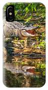 Louisiana Bayou 2 - Paint IPhone Case