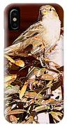 Love Birds II IPhone Case
