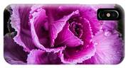 Love Of Lavender IPhone Case