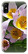 Lovely In White And Yellow - Tulips IPhone Case
