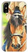 Lovely Paso IPhone Case