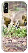 Lunchtime Explorations  IPhone Case