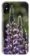 Lupine At The Gate IPhone Case