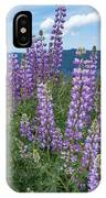 Lupine Blooms Of Bald Hills IPhone Case