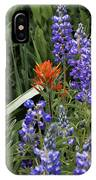 Lupine With Paintbrush IPhone Case