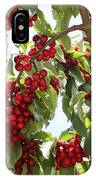 Luscious Cherries IPhone Case