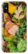 Luscious Lettuce IPhone Case