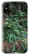 Lush Ferns Of The Forest IPhone Case