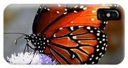 Macro Butterfly IPhone Case