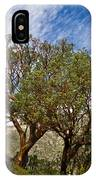 Madrone Trees IPhone Case