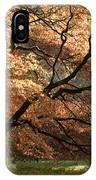 Magnificent Autumn IPhone Case