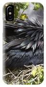 Magnificent Frigatebird Galapagos IPhone Case