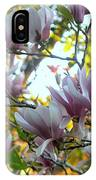 Magnolia Maidens In A Border IPhone Case