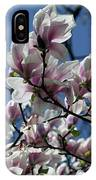 Magnolia Twig IPhone Case